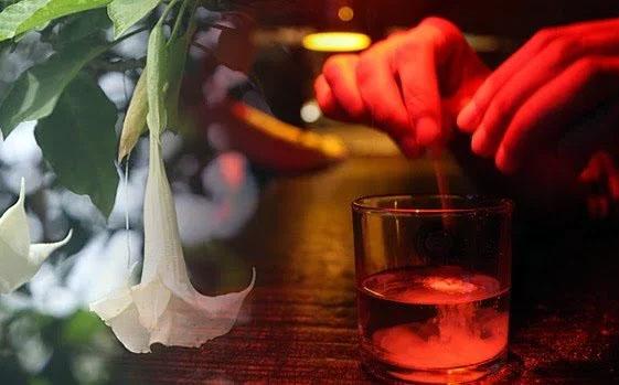 مخدر غورباقه در نوشیدنی